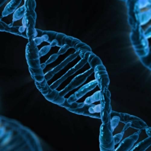 BRIEF ON LONG NON-CODING RNA